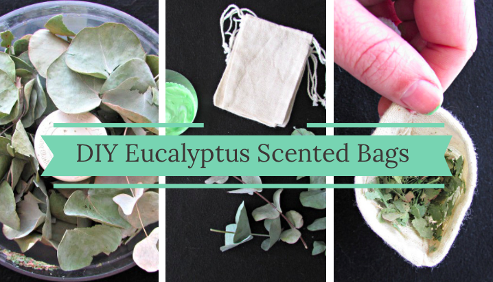 Shawn Johnson's the body department - DIY Eucalyptus Scented Bags